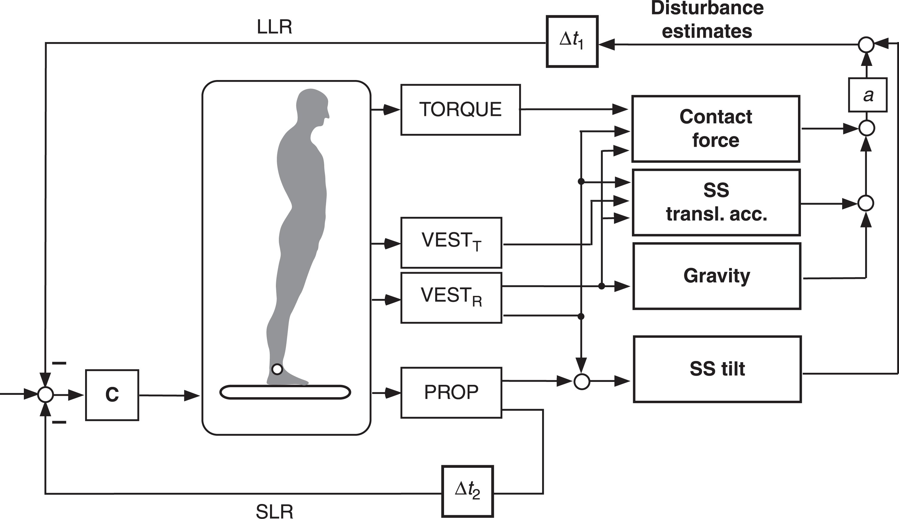 More detailed version of DEC model. It shows the network of sensor output signals that feed into the disturbance estimations (VESTT and VESTR, vestibular sensors of head translation and rotation, respectively). The lower feedback loop represents the servomechanism in terms of short-latency reflex, SLR (lumped time delay is in the order of Δ
