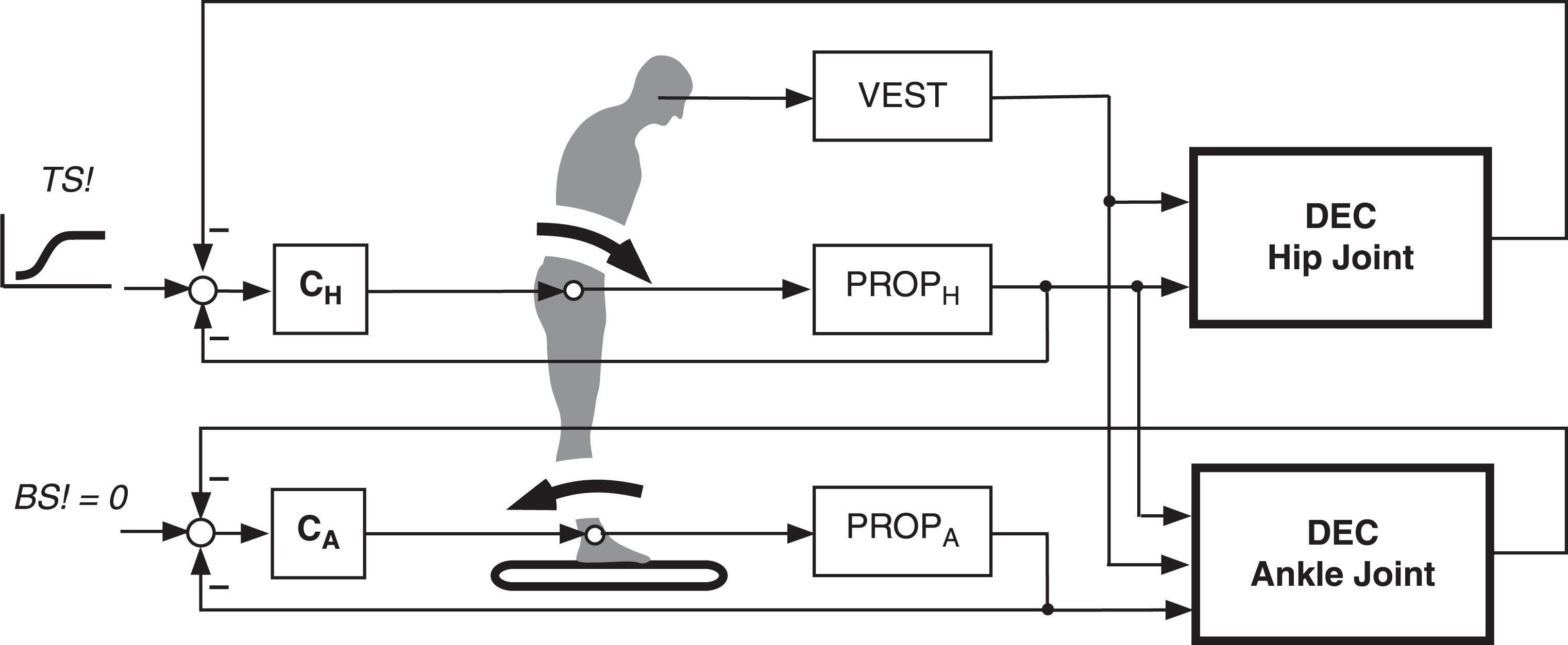 Emergence of movement synergy and postural adjustment from hierarchical DEC control (extended to include the hip joints in addition to the ankle joints). Trunk lean forward automatically leads to backward lean of legs. Simplified control model of corresponding double inverted pendulum biomechanics, where the desired trunk-in-space movement signal (