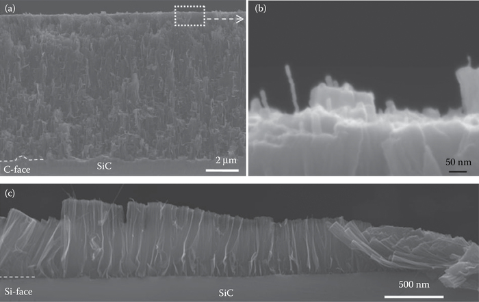 SEM micrographs of CNTs formed after 4 h at low vacuum (10