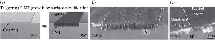 (a) Coating with a fluxing agent leads to localized formation of CNTs on the (b) C-face and (c) the Si-face of SiC. SEM micrograph showing that CNTs grow on the patterned areas, whereas graphite covers the remaining surface. Wafers were treated at 1700°C.