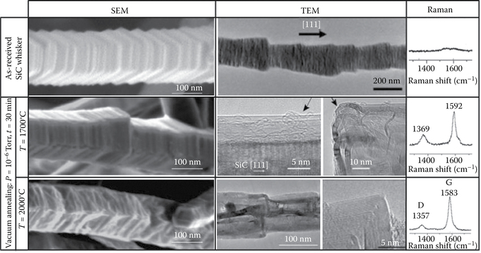 SEM, TEM, and Raman studies on as-received and vacuum-annealed SiC whiskers.