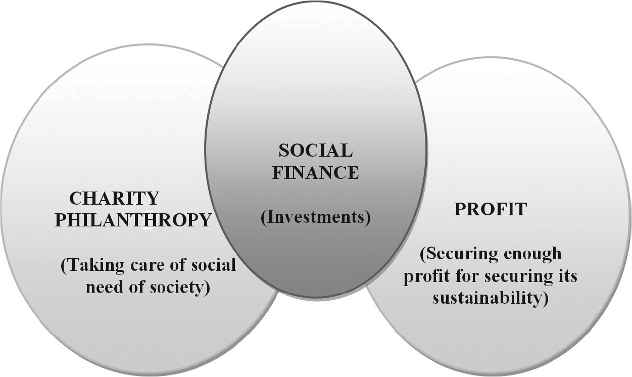 The role of social finance